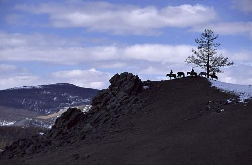 Mongolia;  © Marek Arcimowicz